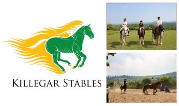 1 Hour (€18) or 2 Hour (€35) Horse Riding Lesson OR Forest Trek at Killegar Stables, Wicklow.