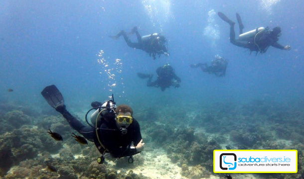 Choose from 2 Fantastic Scuba Diving Courses at Scubadivers.ie, National Aquatic Centre!