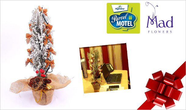 Mad Flowers: €20 for a Christmas Desktop Tree With Lights available from collection at Any Parcel Motel